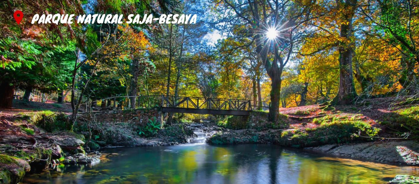 P.N. Saja-Besaya & bosque de Sequoyas Gigantes