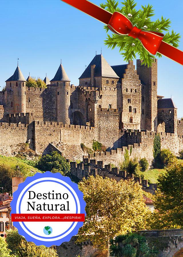 Toulouse, Carcassonne, Cordes Sur Ciel & Albi